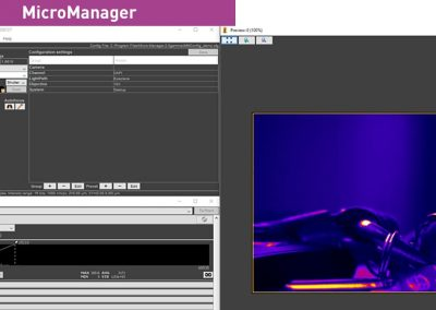micromanager firtslight
